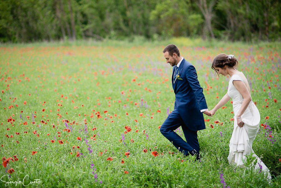 couple wedding photos at a poppies field